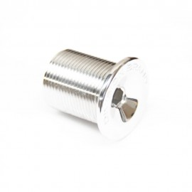 DIVISION 2015 Fork Top Bolt to suit M25X1.5 POLISH